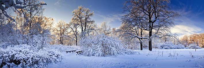 A qué huele el invierno?